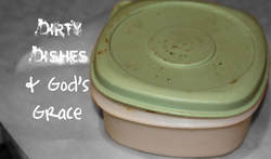 Dirty Dishes & God's Grace: A testimony of His Goodness when a dirty plastic storage container is found on the curb.